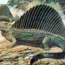On the News   Olson's Extinction: The Permian's Dirty Little Secret Die-off @ Discover Magazine