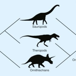 Just out | Evolution: Uprooting the Dinosaur Family Tree @ Current Biology
