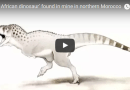 (VIDEO) On the News | Morocco | 'Last African dinosaur' found in mine in northern Morocco @ Hindustan Times