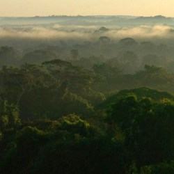On the News | Brazil | Amazônia já foi inundada duas vezes pelo mar @ Portal Amazônia
