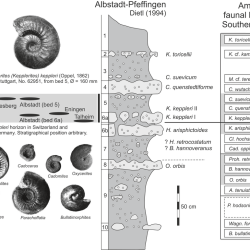 Just out | The evolution of Oppel's 'Macrocephalusbett' (Callovian, Middle Jurassic) @ Lethaia