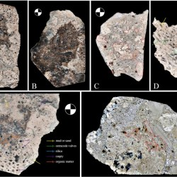 Just out | Microbial–caddisfly bioherms in the Early Cretaceous Yixian Formation in the Yixian Basin, Western Liaoning, China @ Cretaceous Research