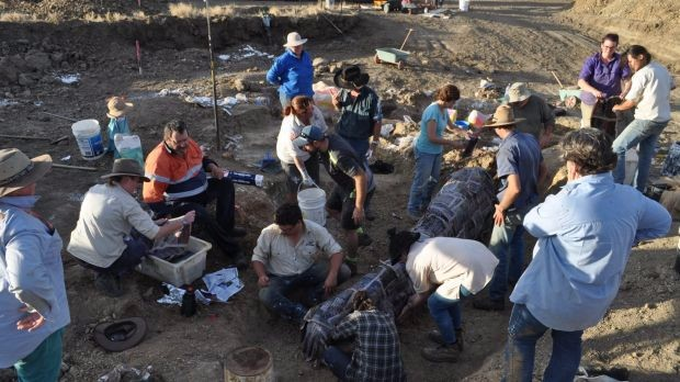 On the News | Australia | Rare bones bring stampede of dinosaur experts to tiny Qld town @ The Sydney Morning Herald