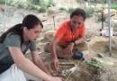 Job | Assistant Professor – Paleontology/ Sedimentary Geology