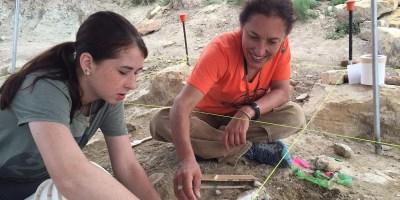 Job | Assistant Professor – Paleontology/Sedimentary Geology