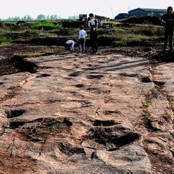 On the News | China | This paleontologist races the bulldozers to track down China's dinosaurs @ Science News