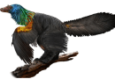 On the News   China   Scientists see evidence of iridescent rainbow feathers on a dinosaur @ Los Angeles Times