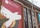 Job | Burke Museum | Paleontology Lab Manager