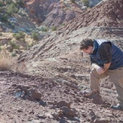 On the News | USA | New fossil discoveries show paleontology depends on protecting places like Bears Ears @ The Wilderness Society