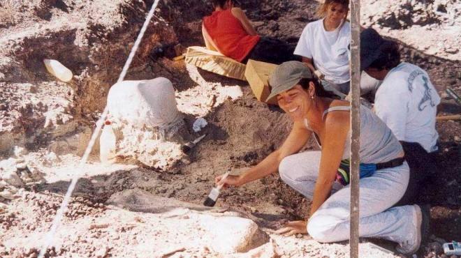 On the News | Argentina | Choconsaurus, el nuevo dinosaurio de El Chocón @ Río Negro