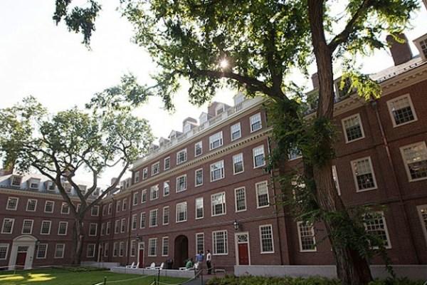 Job | Harvard University | Postdoctoral Fellow in Invertebrate Paleobiology and Evolution
