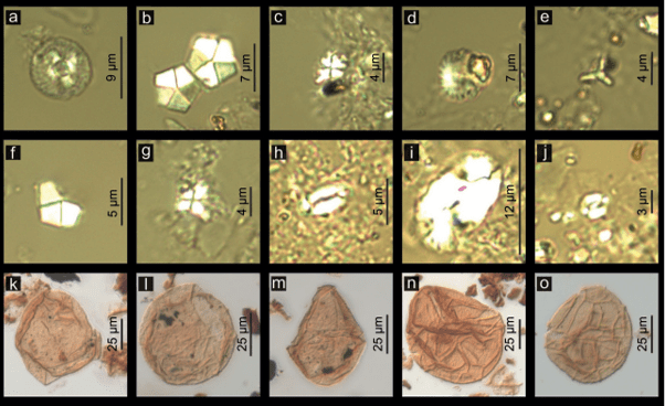 Just out | Integrated biostratigraphical, sedimentological and provenance analyses with implications for lithostratigraphic ranking: the Miocene Komjatice depression of the Danube Basin @Geologica Carpathica