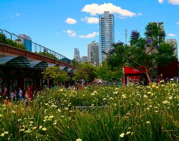 Distrito Arcos deberá destinar 20000 m2 al uso y utilidad pública