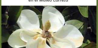 """""""Desde el Jardín. Prácticas y Labores Cotidianas"""" en el Museo Larreta"""
