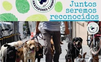 La Legislatura solicita a la Ciudad que declare a los trabajadores caninos como servicio esencial