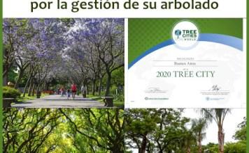 """La Ciudad de Buenos Aires reconocida como """"Tree Cities of the World 2020"""""""