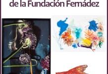 Catálogo de arte a beneficio de la Fundación Fernández