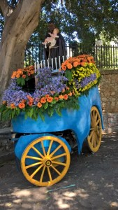 San Benedetto 54 carro