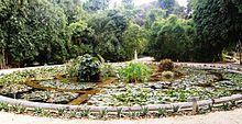 220px-aquarium01_orto_botanico_palermo