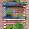 Italienisches-Kräuterregal-Kräutergarten-Anzuchtregal-Holz-für-Balkon-und-Garten-USA