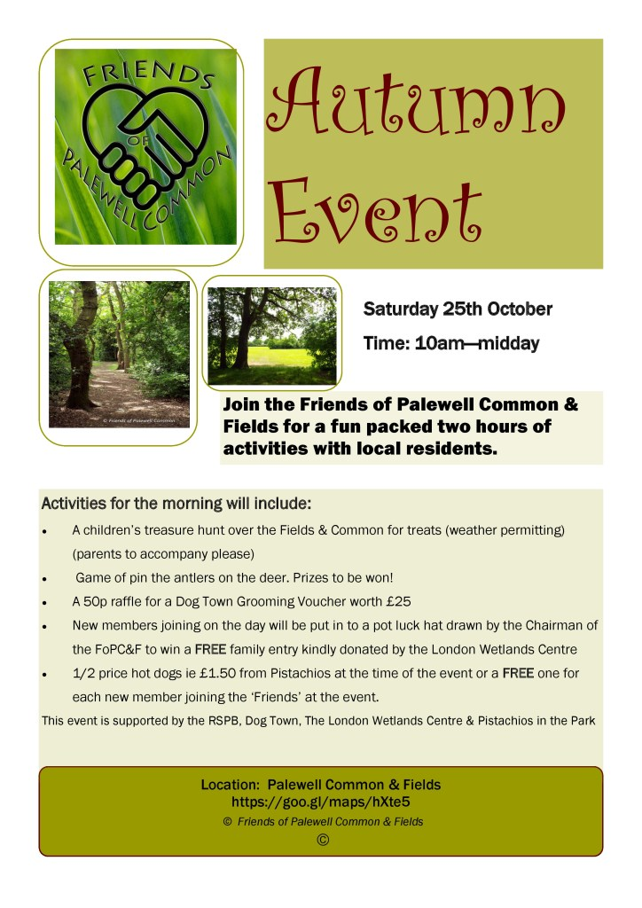 Friends-of-Palewell-Common-25th-October-event-page-0