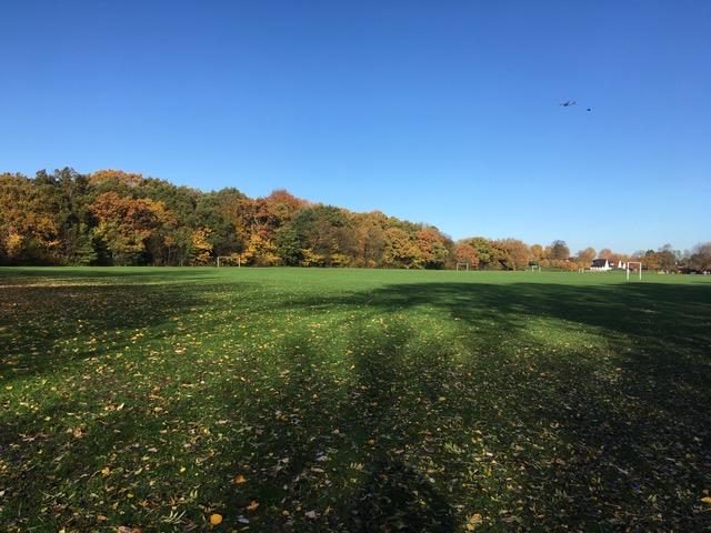 Palewell Autumn 2018
