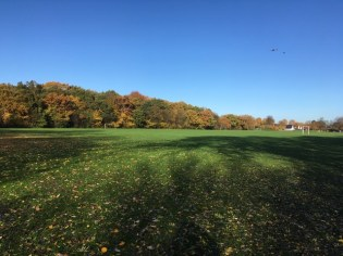 Palewell Autumn 2018