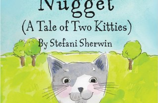 Library to Feature Noodle and Nugget