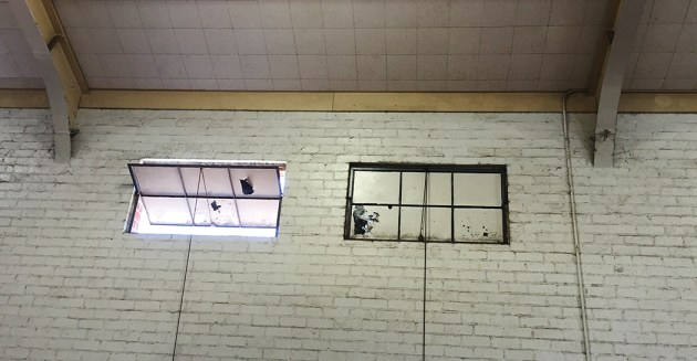 The windows in the old gym need to be repaired and the gym cleaned.