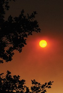 """Palisadian Jim Kenney took this photograph at 4 p.m. on July 23 in the Palisades. """"With smoke from the fire in Sand Canyon, the brilliant red of the sun only lasted about 20 minutes; when the wind shifted, it became much less dramatic,"""" Kenney told the Palisades News. Photo: Jim Kenney"""
