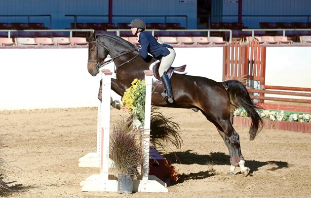 Fiona Sewell riding Karl, a Hanoverian, took first place in the Onondarka Medal Challenge.