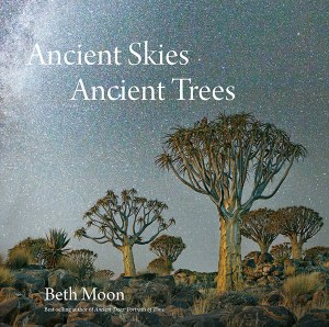 13-ancient-skies-ancient-trees