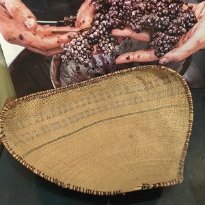 Piute or Washoe winnowing tray, early to mid- 1900s. Donated by Dr. and Mrs. Van Kirke Nelson, Trails End Collection. Photo: Libby Motika