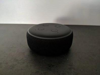 amazon echo dot (2)
