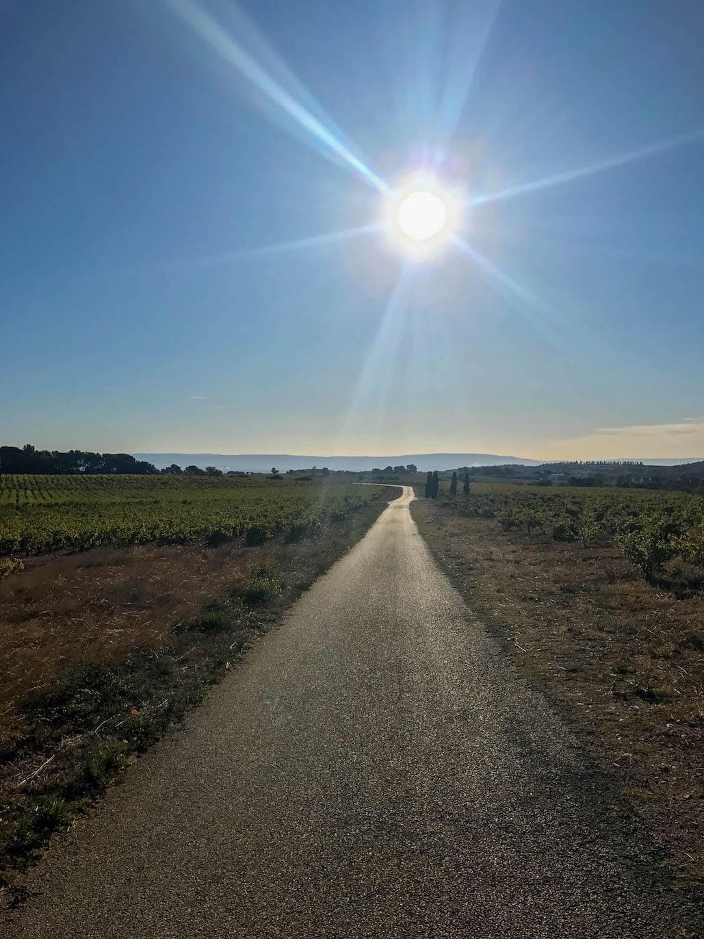 Southern Rhône Valley Vineyard Road
