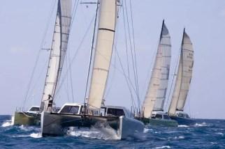regatta cats south florida PBC