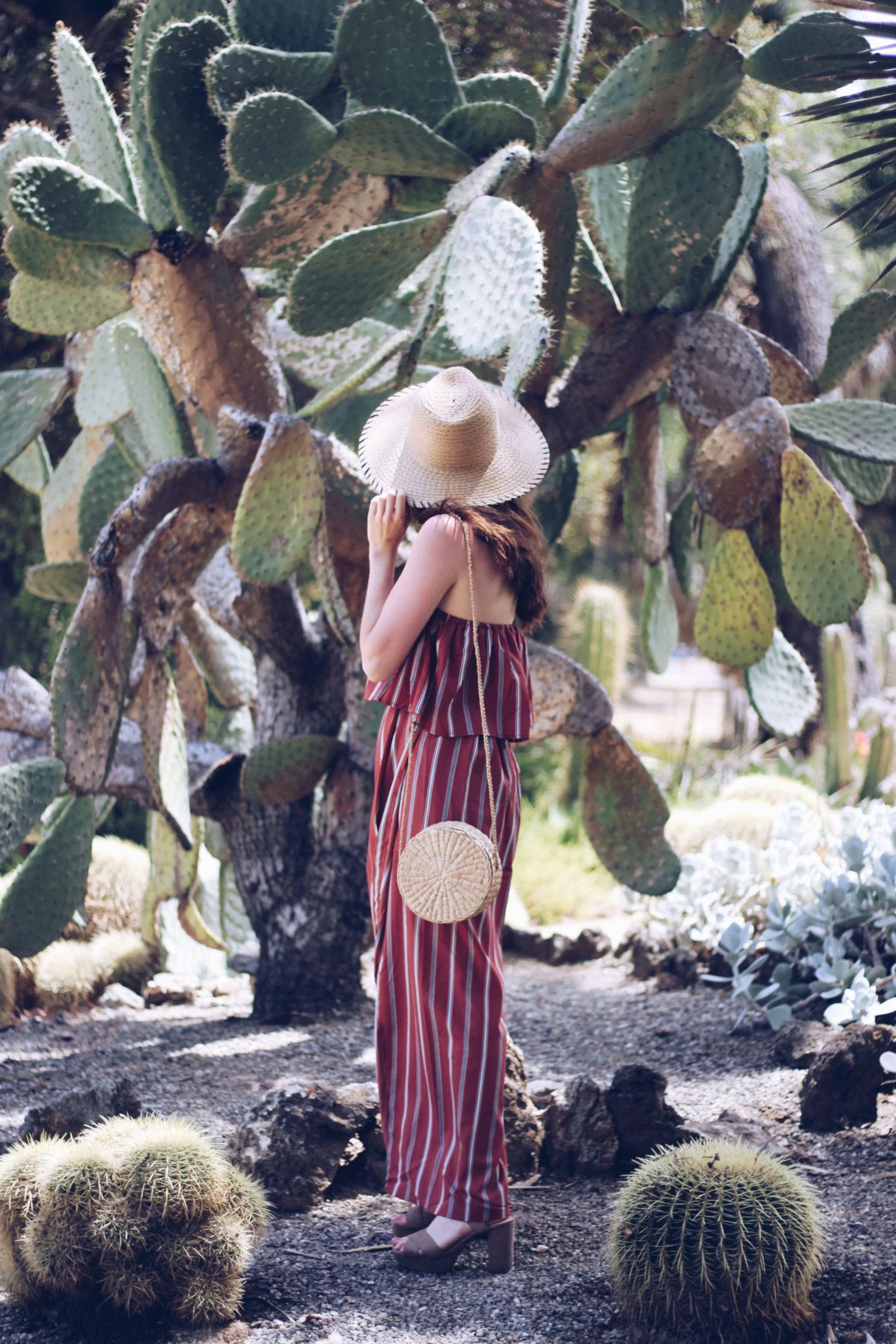 Hidden Palo Alto: Arizona Cactus Garden