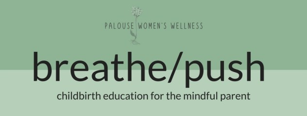 breathe/push - childbirth education for the mindful parent