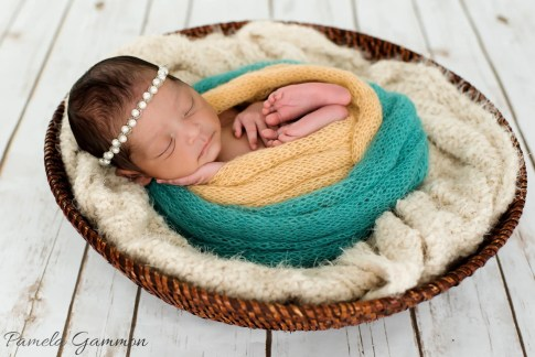 Huntington West Virginia Newborn Photographer