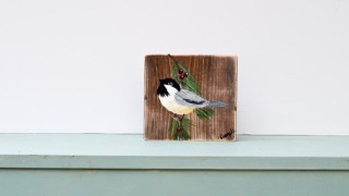 How to Paint a Chickadee in Acrylics
