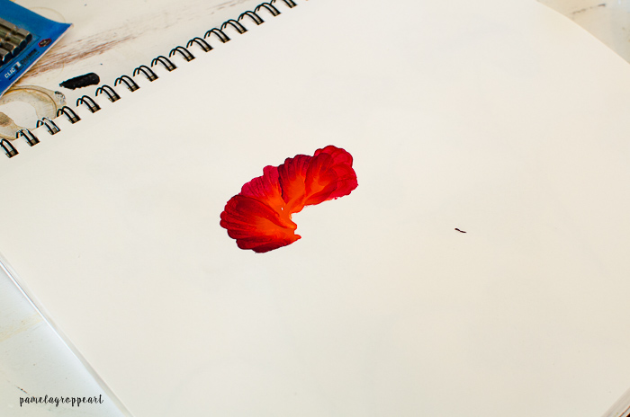 second and third stroke in poppy painting
