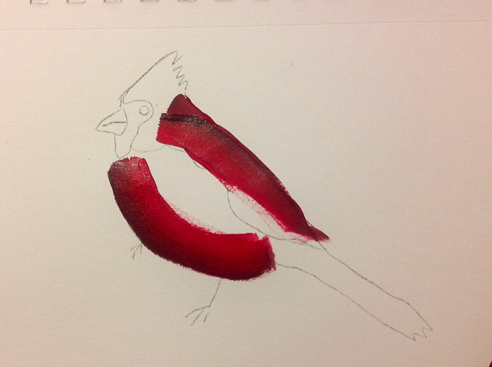 paint a cardinal belly,. How to Paint a Cardinal