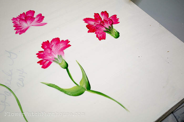 Calyx attaches to petals, painting a carnation, pamela groppe art