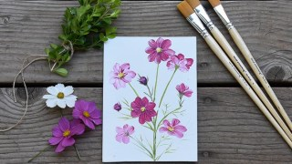 How to Paint Cosmos Flowers