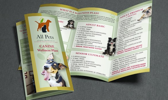 Veterinary Brochure