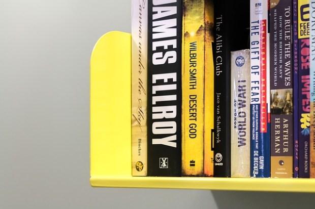 bookshelf-846984_640