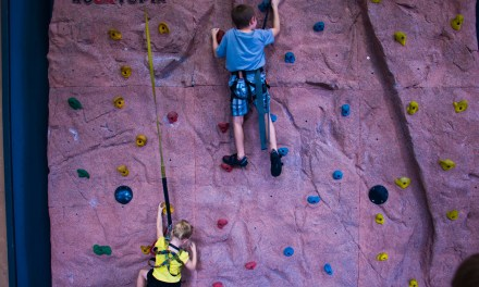 Our Chattanooga High Point Climbing Experience with Video