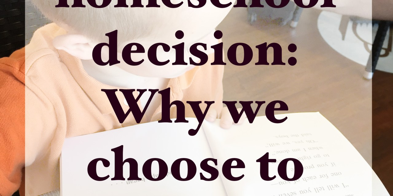 Our Homeschool Decision: Why we choose to homeschool