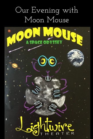 Moon Mouse: A Space Odyssey is a performance that is magical for the whole family. The mouse will make his way into your heart and you will not want to miss this show when it comes to your area.