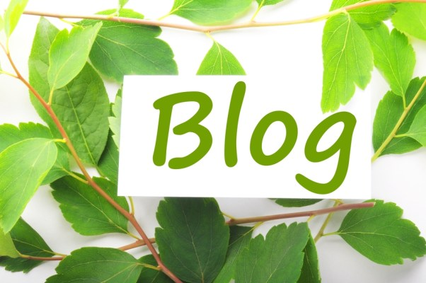 guest blogging content syndication tips